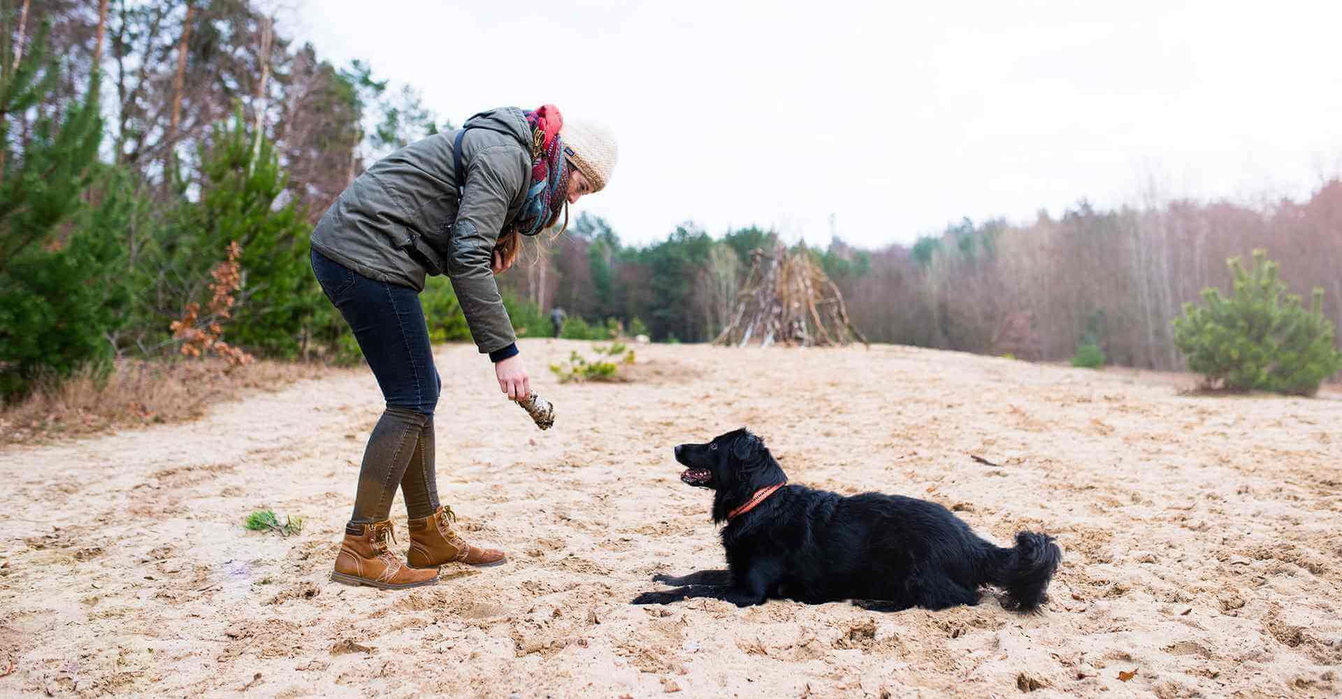 Frau spielt mit schwarzem Hund in der Natur