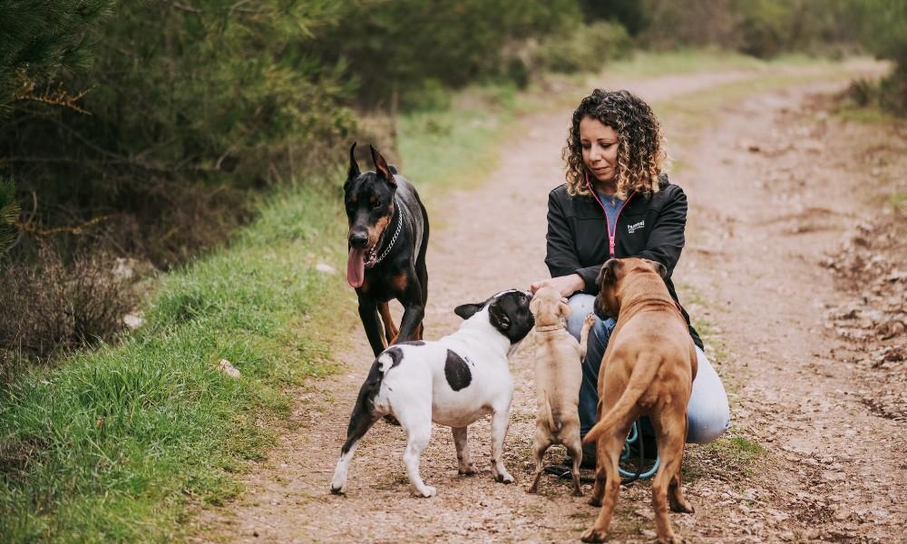 Frau mit Hunden